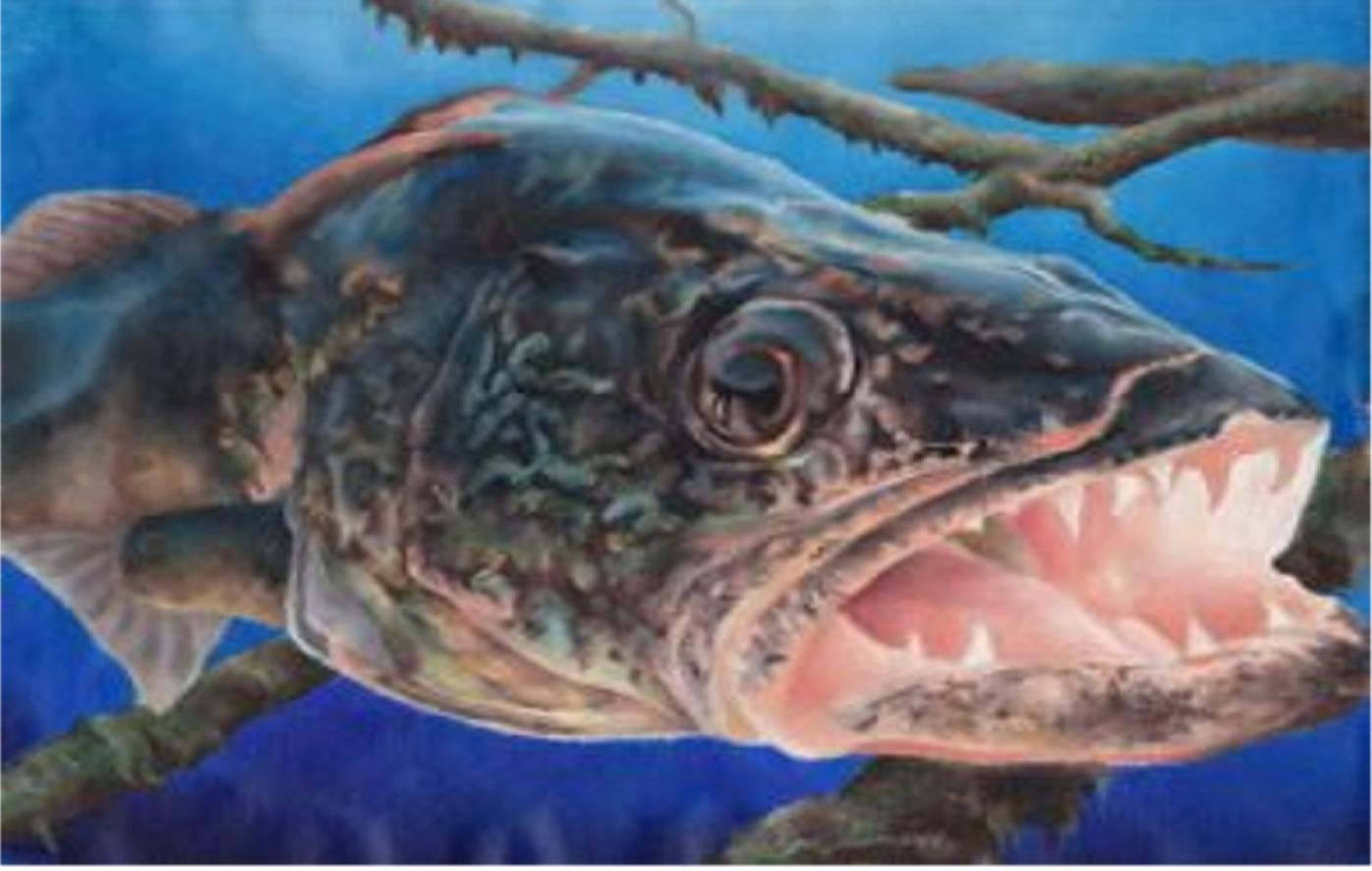 Walleye FishingSaginaw, MI. Bay